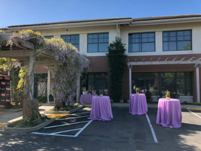 Plastic Surgery Events in Granite Bay